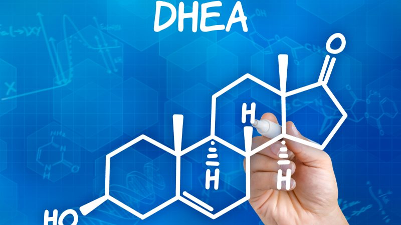 DHEA and the Production of Male and Female Sex Hormones