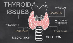 Thyroid Disorders—Testing and Treatment