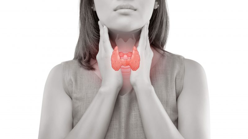 Hyperthyroidism—What Your Hormones Could Be Hiding?