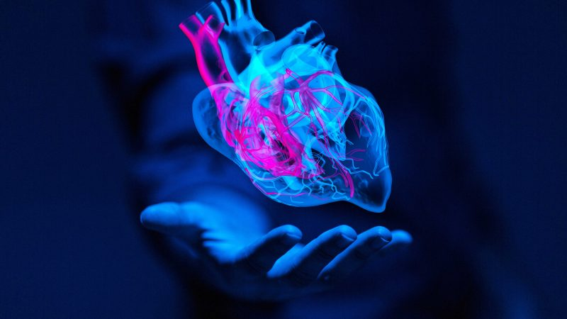CardioMetabolic Testing (Cardiovascular disease, Metabolic risk, Pre-Diabetes, and Vascular Inflammation)